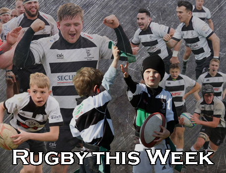 2019 Rugby this Week W